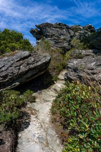 Rock Garden on the Mountains to Sea Trail