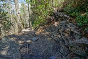 Table Rock and Mountains to Sea Trails