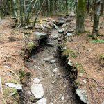 Eroded Trail on Calloway Peak