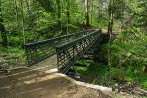 Bridge on the Profile Trail