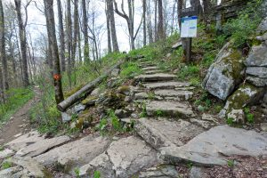 Steps to the Profile Campsite