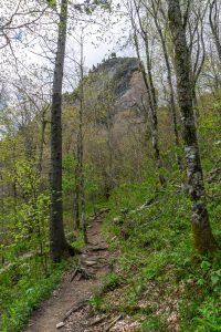 Cliffs Above Profile Trail