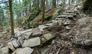 Stone Steps and Switchback on Grandfather Mountain