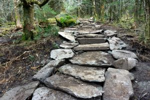 Stone Work on the Profile Trail