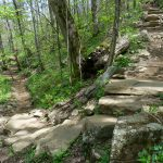 Switchback on the Profile Trail