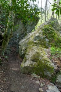 Profile Trail Through Rock Cleft