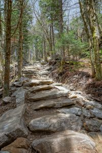 Steps on the Upper Section of Profile Trail