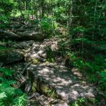 Rocky Section of Big Tom Trail