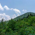 View of Big Tom (Peak) from Big Tom Trail
