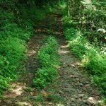 Buncombe Horse Range Trail
