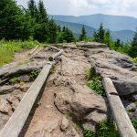 Log Guides on Mount Craig