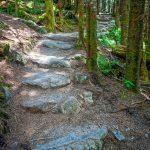Rock Steps on the Deep Gap Trail