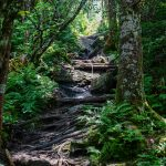 Steep Section of Deep Gap Trail