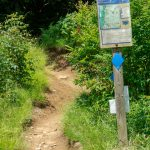 Mount Mitchell Trail at Commissary Hill